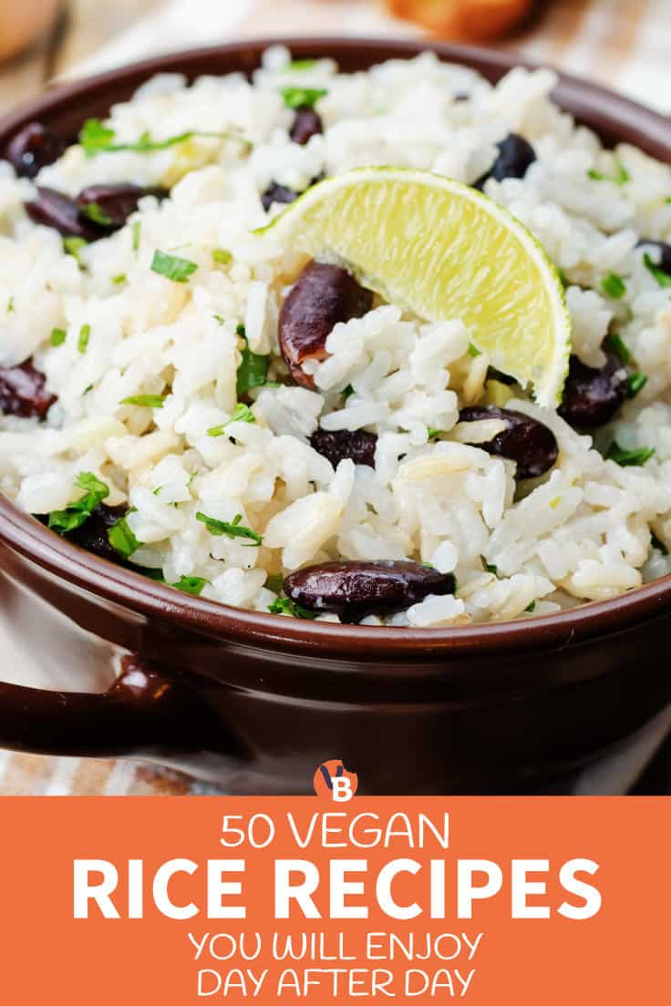 50 Vegan Rice Recipes You Will Enjoy Day After Day