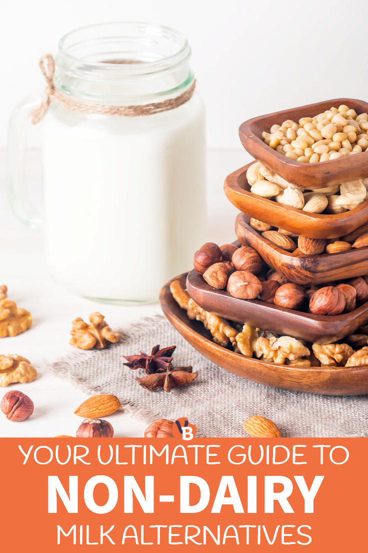 Your Ultimate Guide to Non-Dairy Vegan Milk Alternatives